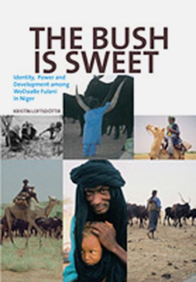 The Bush is Sweet: Globalization, Identity and Power Among Wodaabe Fulani in Niger